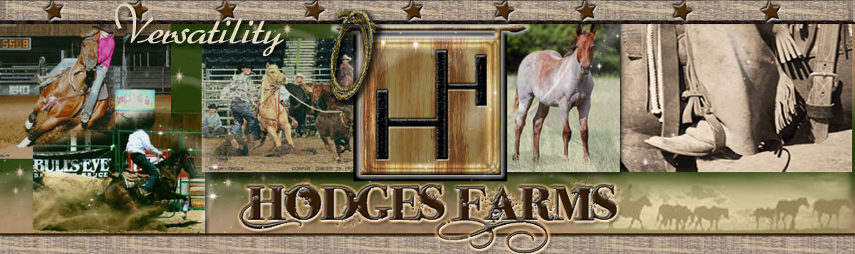 Hodges Farms